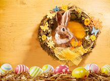 Happy Easter greeting card background. With decorated spring wreath with flowers and butterflies with a cute rabbit peeking out and lower border of colorful stock photos