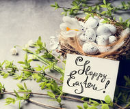Happy Easter greeting card with bird nest and eggs Stock Images