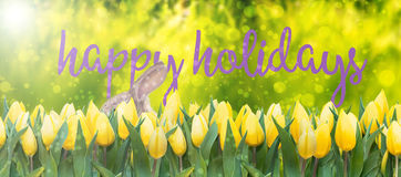 Happy easter holidays Stock Images