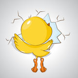 Happy Easter! Little chicken. Royalty Free Stock Images