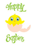 Happy Easter postcard with cute chicken in egg. Royalty Free Stock Images