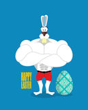 Happy Easter. Powerful rabbit guards Easter egg. Strong rabbit a Royalty Free Stock Photo