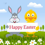 Happy Easter Rabbit & Chick in a Meadow Royalty Free Stock Photo