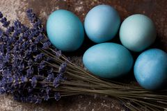Happy Easter rustic concept with copy space. DIY dyed various shades of blue Easter eggs with lavender. stock image