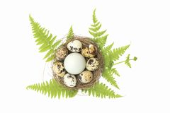 Happy Easter.Set of Easter eggs with different texture on a white background.Spring holiday. Vector foto .Happy easter eggs. On a white background.Spring holiday royalty free stock photo