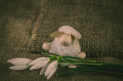 Happy Easter sheep and snowdrop Stock Images
