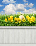 Happy Easter Spring background backdrop Stock Photo
