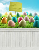Happy Easter Spring background backdrop Royalty Free Stock Photos