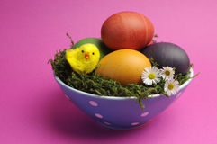 Happy Easter still life against a pink background. Royalty Free Stock Photography