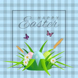 Happy Easter text on cellular background with grass, daisies and easter eggs for Paschal greeting card. Royalty Free Stock Photo