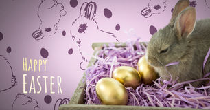 Happy Easter text with Easter Rabbit with eggs and pattern Royalty Free Stock Photo