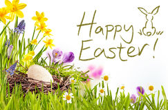 Happy Easter text with grass and egg border Stock Images