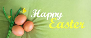Happy Easter text, lettering on a velvet, olive, green background with orange eggs and daffodils. Illustration greeting card, ad, royalty free stock images