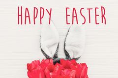 Happy Easter text. season`s greetings card. bunny ears and styli stock photo