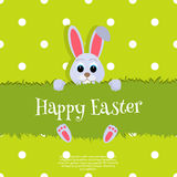 Happy Easter. Vector Easter bunny looking out a green background Wide copy space for text. Stock Photography