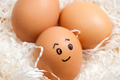 Happy Egg Stock Photos