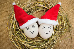 Happy eggs at Christmas. Stock Image