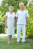 Happy elder couple in the late spring outside. Portrait of a happy elder couple in the late spring outside stock photography