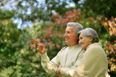 Happy elder couple Stock Image
