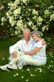 Happy elder couple resting on grass Royalty Free Stock Image