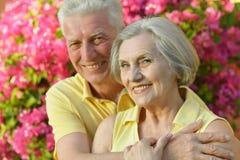 Happy elder couple Stock Images