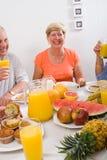 Happy Elderly Royalty Free Stock Images