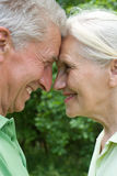 Happy elderly couple. In a summer park Royalty Free Stock Photography