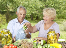 Happy elderly couple. Making home made pickles Royalty Free Stock Photo
