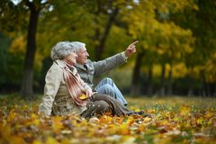 Happy Elderly Couple Stock Photography