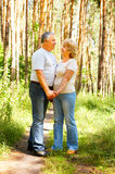 Happy elderly couple Royalty Free Stock Photos