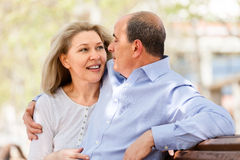 Happy elderly couple hugging on a bench Royalty Free Stock Photo