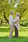 Happy elderly couple Royalty Free Stock Photography