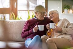 Happy elderly couple relaxing together on the sofa at home