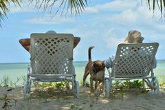 Portrait of happy elderly couple resting in chaise lounges at tropical beach stock images