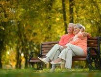 Happy elderly couple sitting on bench Royalty Free Stock Photo