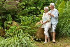 Happy  elderly couple standing embracing Royalty Free Stock Photography