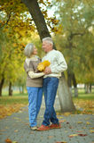 Happy elderly couple Stock Images