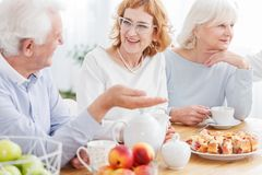 Happy elderly friends enjoying retirement Royalty Free Stock Photos