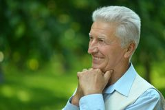 Happy elderly man in summer park Royalty Free Stock Image