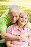 Happy elderly senior couple Stock Image