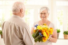 Happy elderly woman getting flowers. Happy elderly women getting big bouquet of colorful flowers from senior man, smiling Stock Photography
