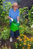 Happy Elderly Woman Watering at the Flower Garden Royalty Free Stock Images