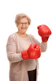 Happy elderly woman wearing a pair of boxing gloves Royalty Free Stock Images