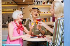 Happy elderly women having a party. Pleasant celebration. Happy elderly women cheering with cocktails while having a party royalty free stock photography
