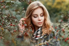 Happy elegant pretty young woman with vintage checkered scarf in luxurious warm coat is standing near a tree in the forest. Attractive joyful girl model enjoy stock images