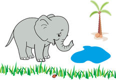 Happy elephant. Near a pond royalty free illustration