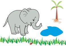 Happy elephant Stock Image