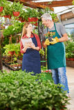 Happy employees working in nursery shop Royalty Free Stock Photo