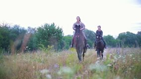 Happy equestrian riders on horseback galloping through the field