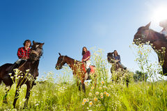 Happy equestrians riding bay horses in the meadow. Portrait of happy equestrians riding bay horses in the flowery meadow at sunny day Stock Photography
